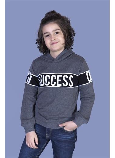 Toontoy Kids Toontoy Erkek Çocuk Garnisi Baskılı Kapüşonlu Sweatshirt Renkli